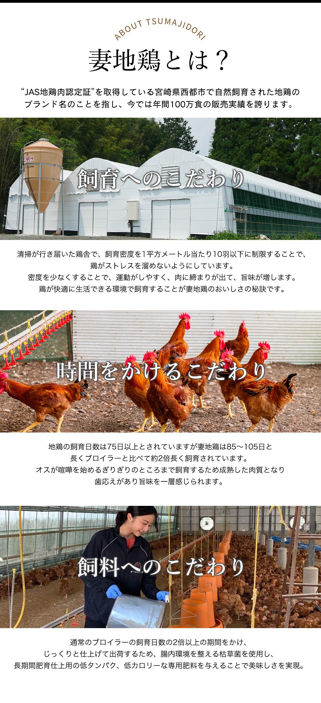 """妻地鶏とは? """"JAS地鶏肉認定証""""を取得している宮崎県西都市で自然飼育された地鶏のブランド名のことを指し、今では年間100万食の販売実績を誇ります。"""