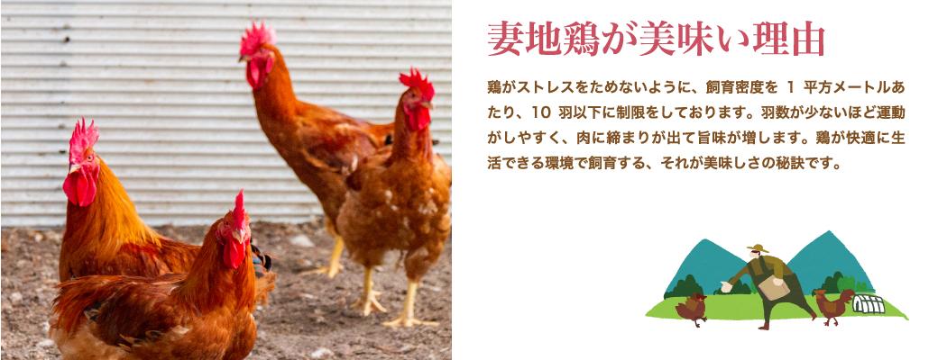 妻地鶏が美味い理由:鶏がストレスをためないように、飼育密度を1平方メートルあたり、10羽以下に制限をしております。羽数が少ないほど運動がしやすく、肉に締まりが出て旨味が増します。鶏が快適に生 活できる環境で飼育する、それが美味しさの秘訣です。